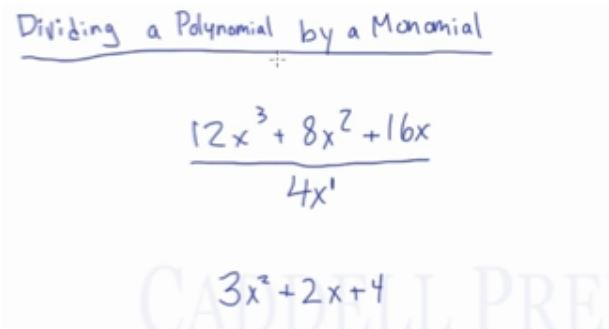 Divide a Polynomial by a Monomial